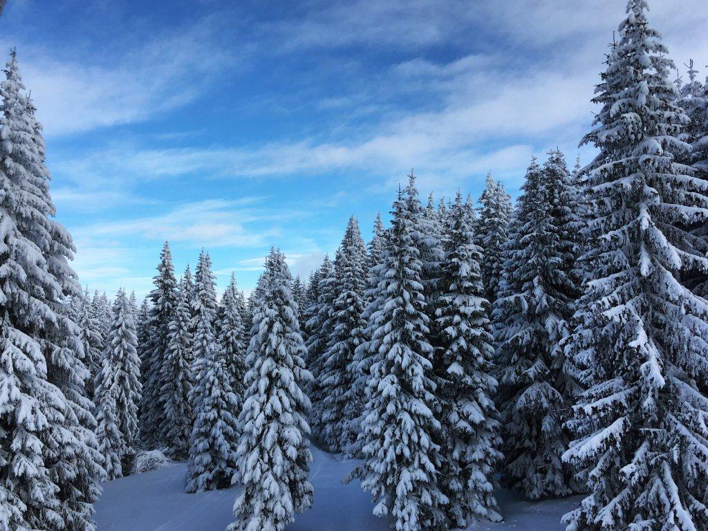 Zimovanje Srbija Kopaonik